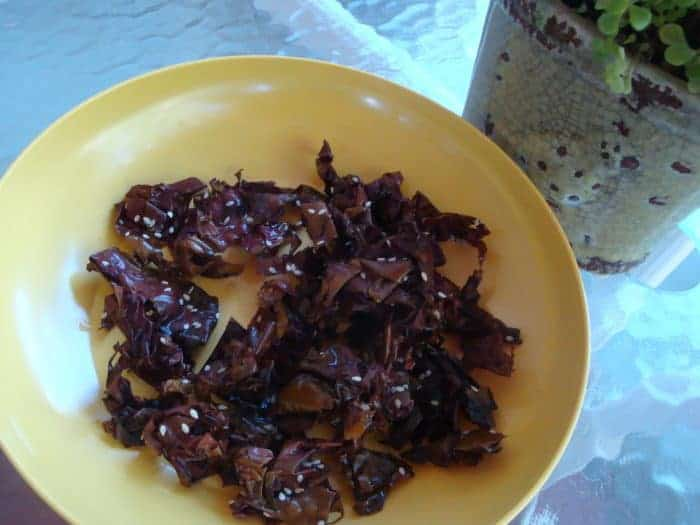 Seaweed Chips